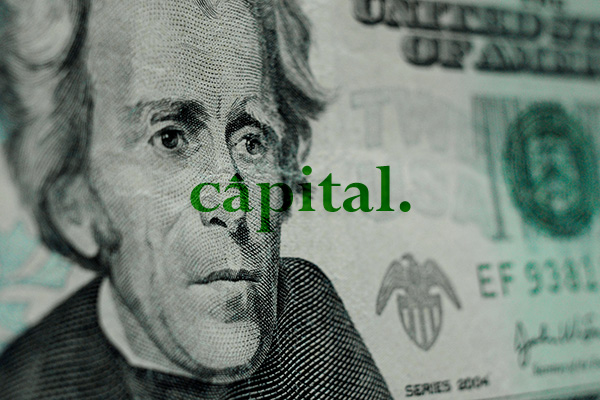 Project Image for Capital Theme